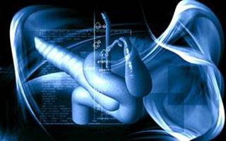 МРТ исследование желчного пузыря